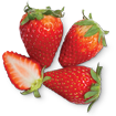 fundraising products - strawberry cream cheese