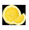 Lemon slices icon